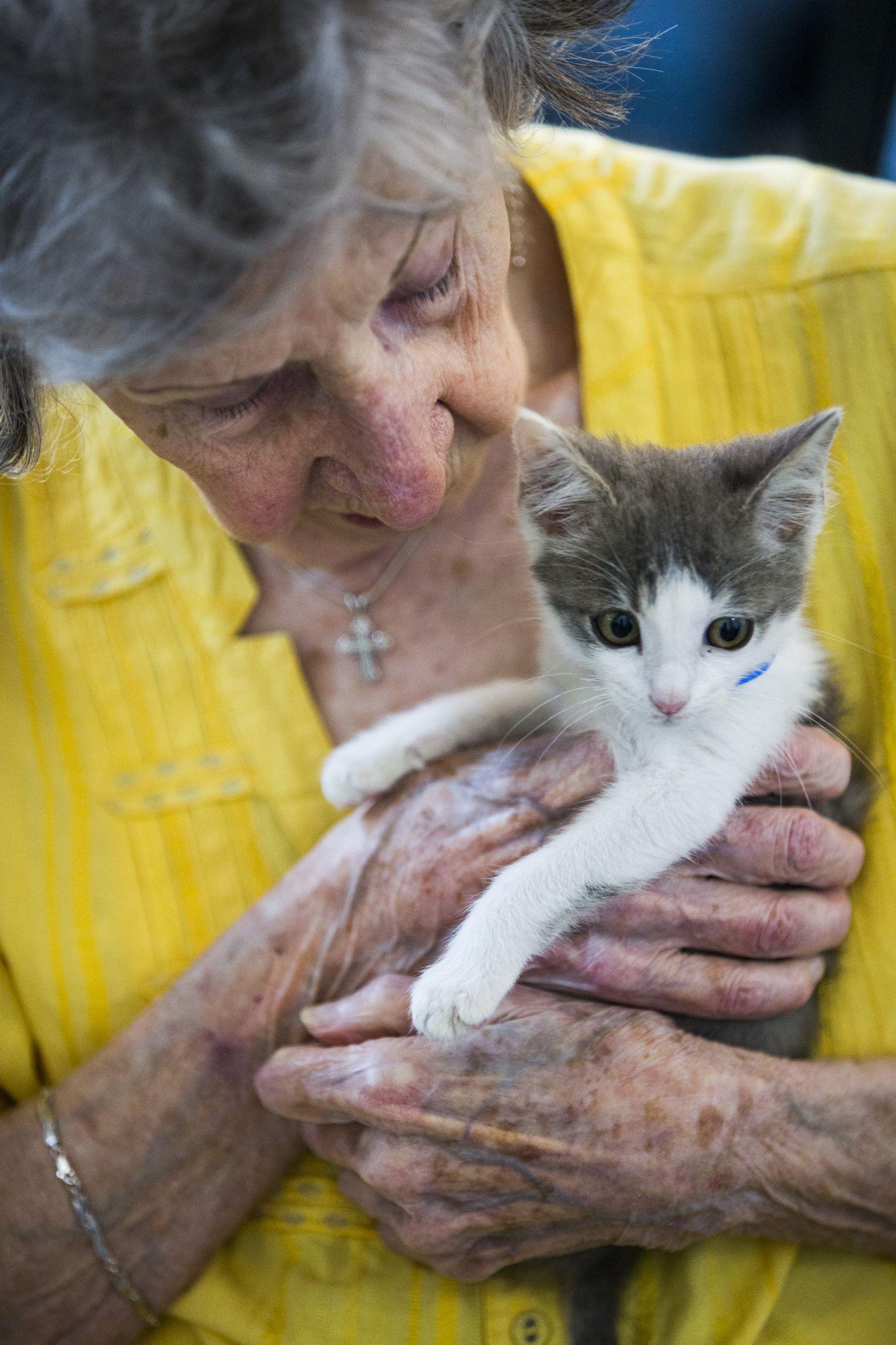 Dottie Lemmond held a kitten before the yoga class.
