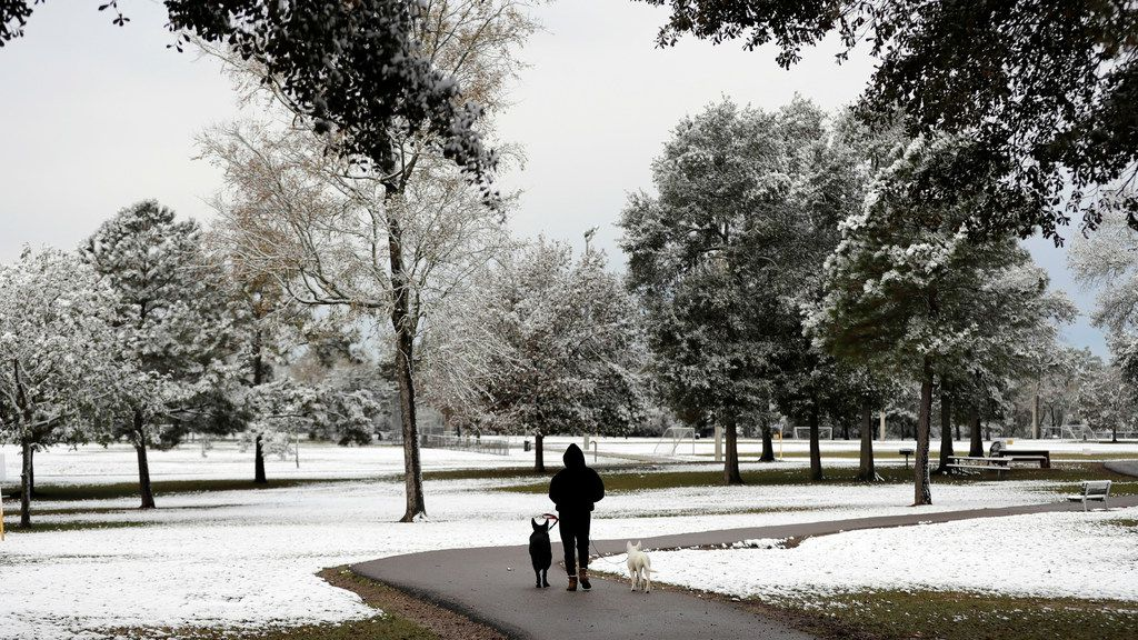 Karyn Archer walks her dogs Maverick, left, and Dakota along a path lined with snow-covered trees at Meyer Park Friday, Dec. 8, 2017, in Spring, Texas, north of Houston. Rare snowfall in many parts of southern Texas has knocked out power to thousands, caused numerous accidents along slick roadways and closed schools. The weather band brought snow to San Antonio, Corpus Christi, Houston and elsewhere.