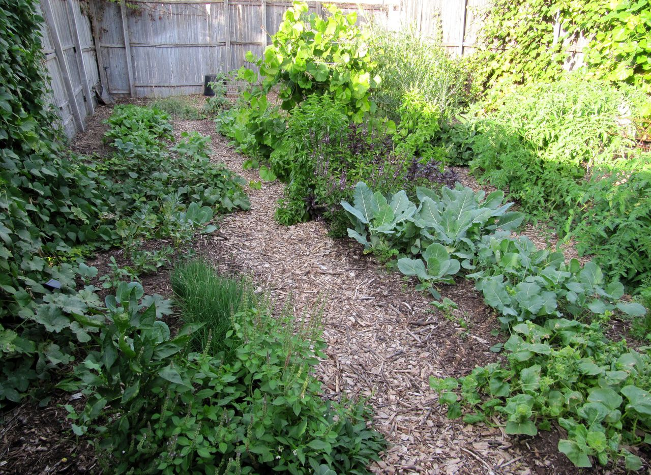 Bed preparation is essential for successful food crops.