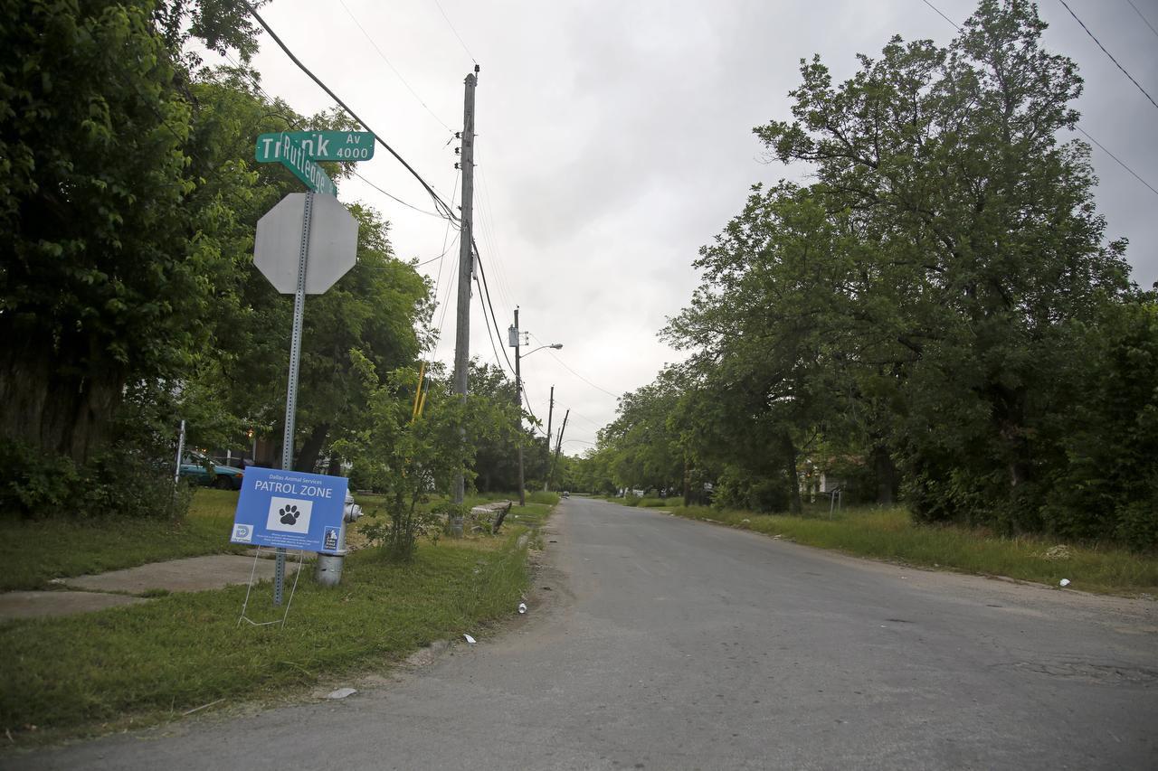 El área de Sutledge Street y Trunk Avenue, donde una mujer fue atacada por una jauría de perros en el sur de Dallas. (DMN/GUY REYNOLDS)