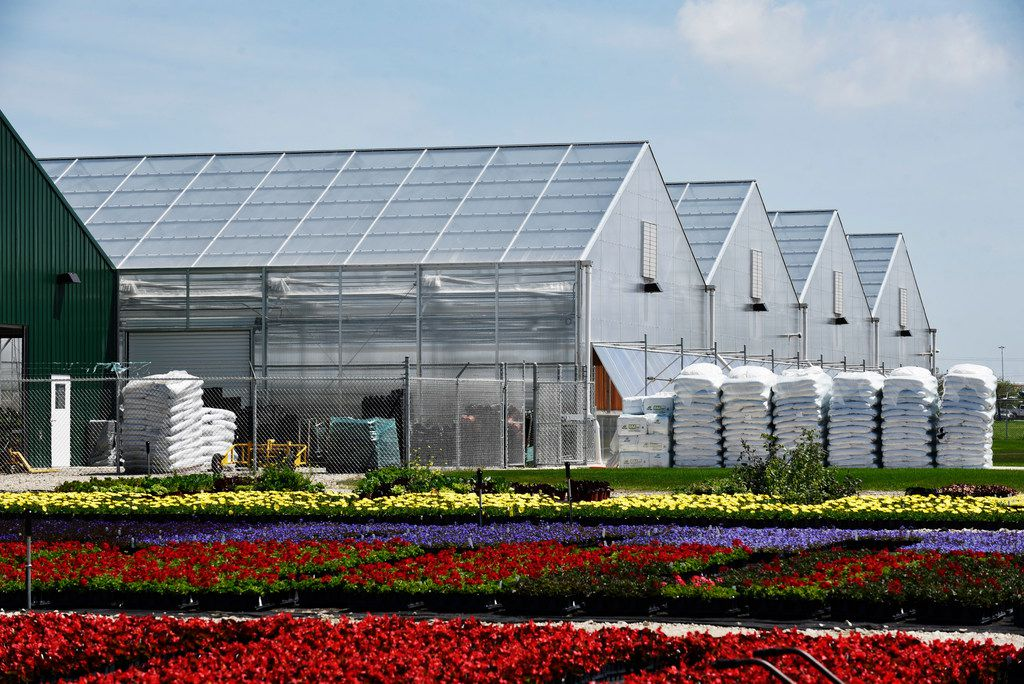 Flower beds that have been moved outside after growing inside the Dallas Arboretum's newest greenhouse, The Tom and Phyllis McCasland Horticulture Center.