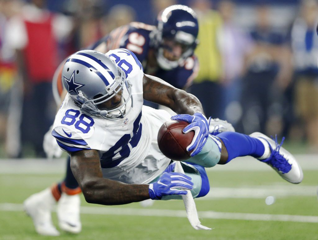 Dallas Cowboys wide receiver Dez Bryant (88) dives for the touchdown in a game against the Chicago Bears during the second half of play at AT&T Stadium in Arlington on Sunday, September 25, 2016. (Vernon Bryant/The Dallas Morning News)