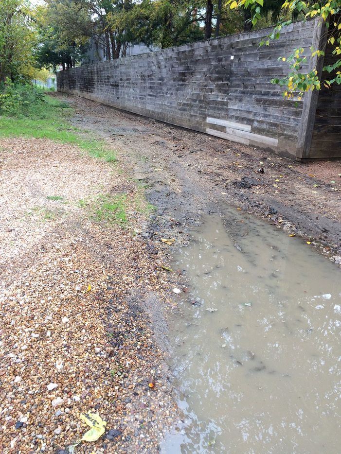 The original abandoned alley as it looked in 2018, before neighbors in the Cochran Heights area of Dallas undertook a revitalization project to fix it. At the time the former alley was full of trash, weeds, and mud and was prone to flooding.