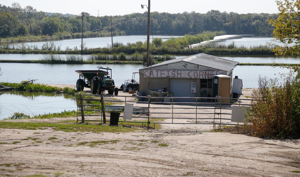 Catfish Corner, a decades-old business owned by Bill Benson, borders the south side of the LoneStar Gun Club.