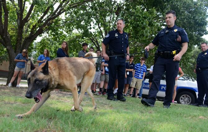 In this 2019 file photo, Richardson Police officers show students how Max, a Belgian Malinois, is able to track items during Youth Citizen Police Academy.