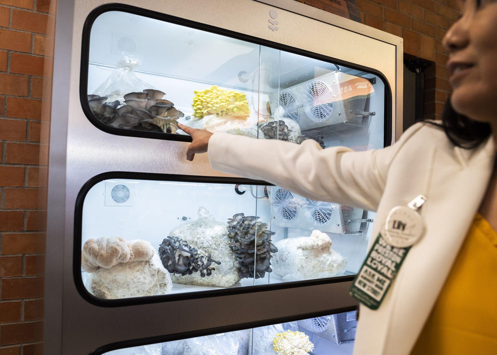 La mánager de Central Market en Preston Road y Royal Lane, Lilly Lin, muestra la colección de hongos exóticos a la venta.