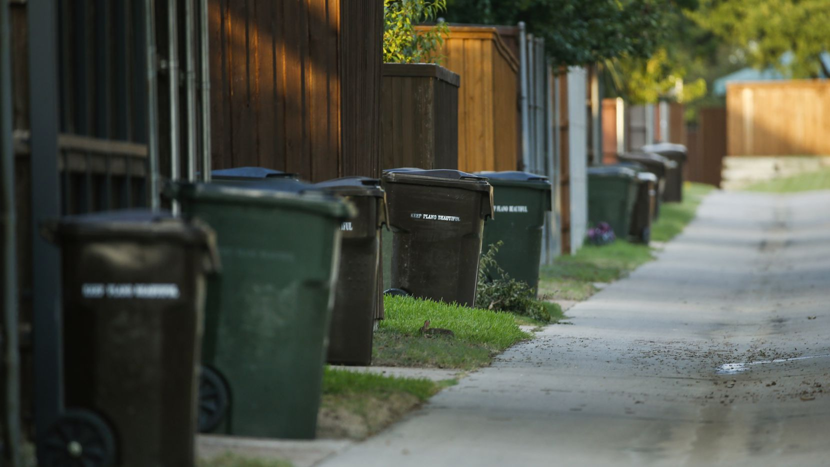 Trash cans line a residential alleyway in Plano in this file photo. (Ryan Michalesko/The Dallas Morning News)
