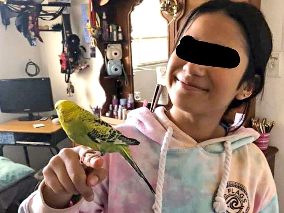 El feminicidio de Ana Paola, una niña de 13 años que fue antes violada en su casa en Nogales, Sonora, causó indignación ante la violencia ejercida, quien se había quedado sola mientras su madre salía a comprar alimentos durante la contingencia.