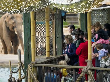 The Fort Worth Zoo has been named one of the 'World's Greatest' by Bloomberg TV.