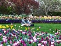 El Dallas Arboretum reabrirá en los próximos días con estrictas reglas de distancia social.