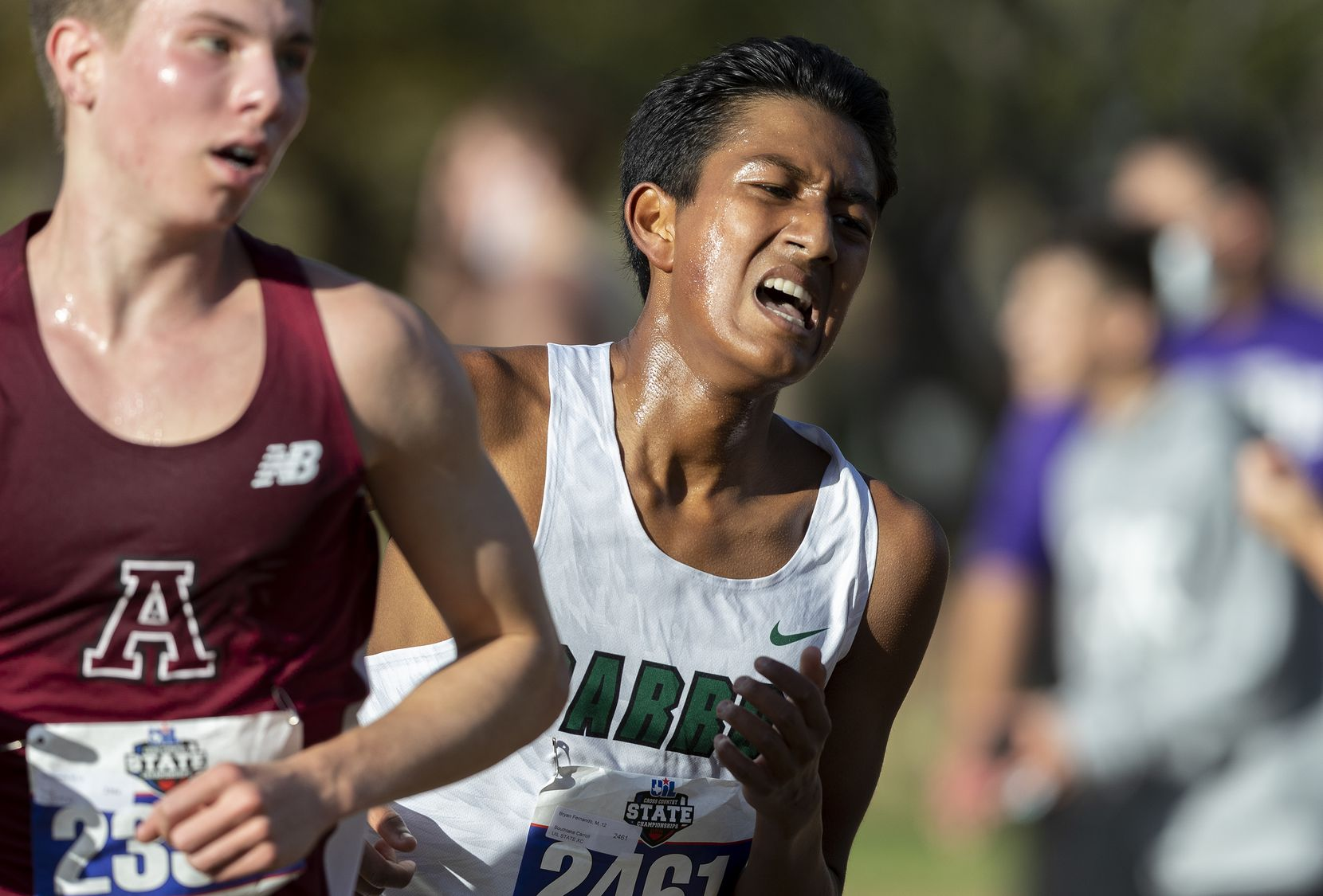 Southlake Carroll's Bryan Fernando (2461) competes in the boys UIL Class 6A state cross country meet in Round Rock, Tuesday, Nov., 24, 2020. (Stephen Spillman/Special Contributor)