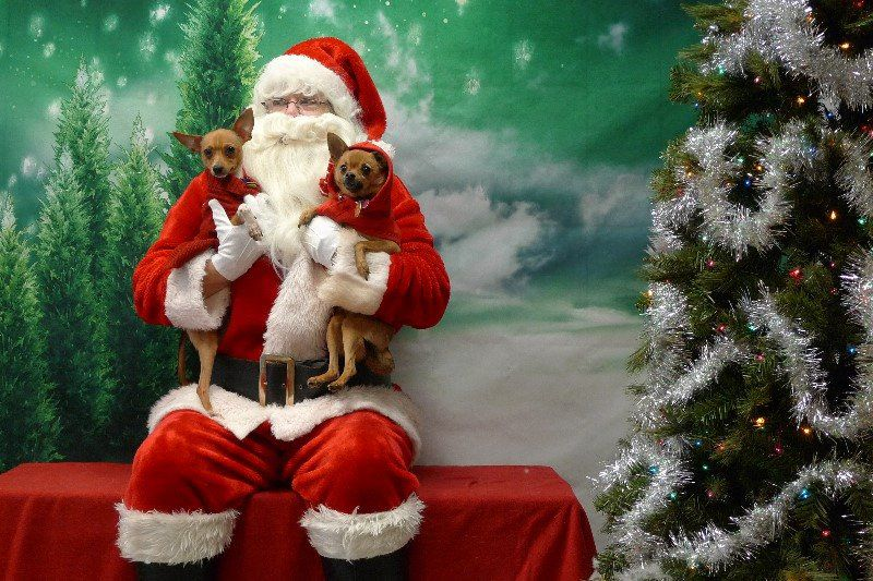 Santa will be at the Operation Kindness Klubhouse from 10 a.m. to 4 p.m. Saturday and Sunday.