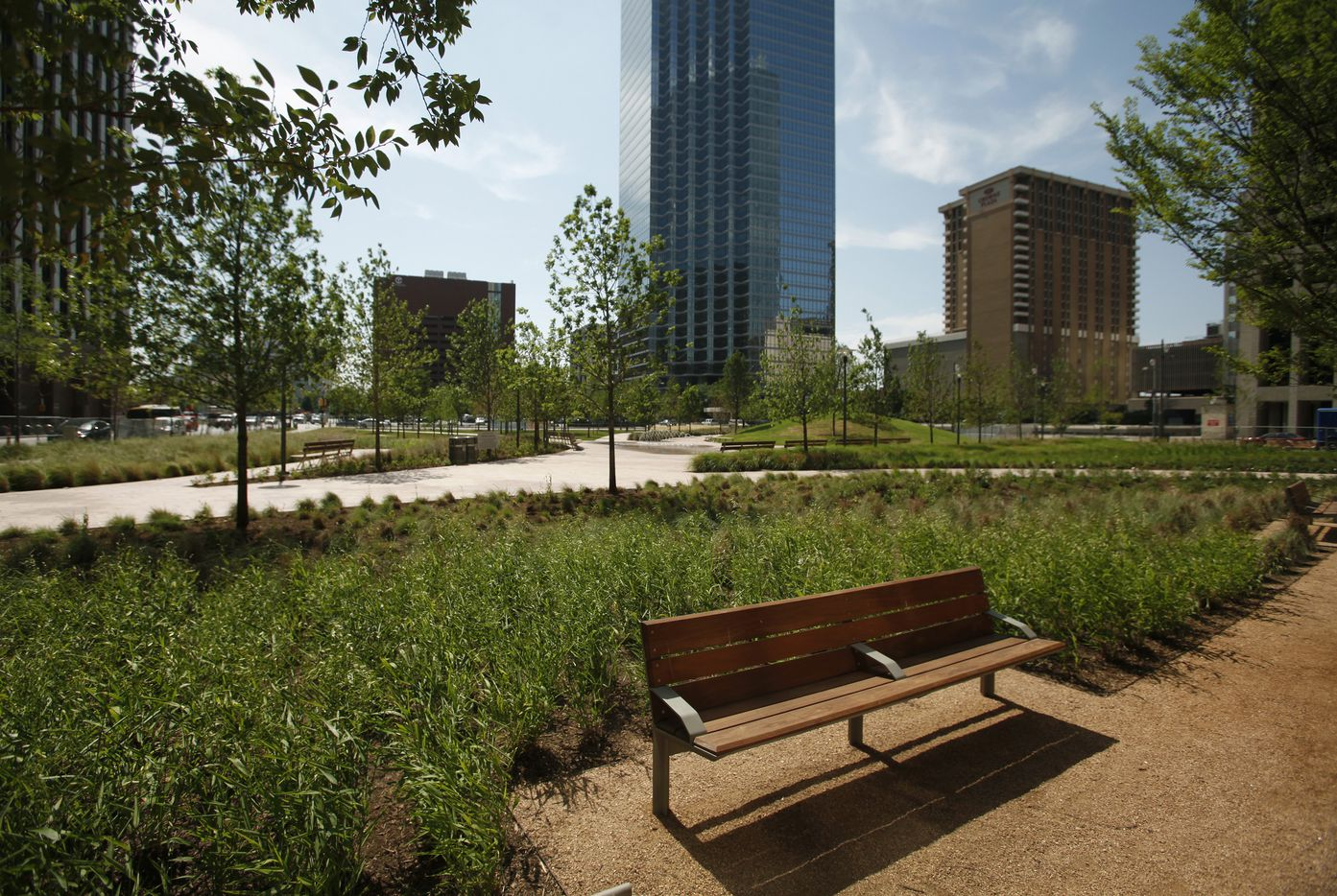 The Belo Garden park downtown Dallas offers green space in the city. Photographed on Thursday, May 3, 2012.
