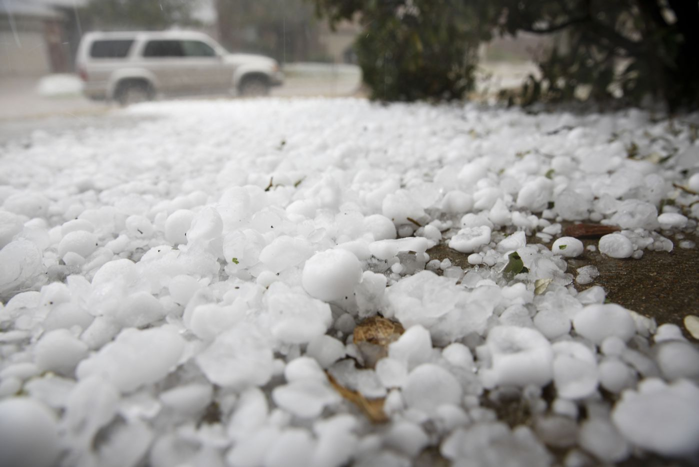 Hail pounded houses and cars in the City of McKinney as a severe storm passed through on Sunday, March 24, 2019.