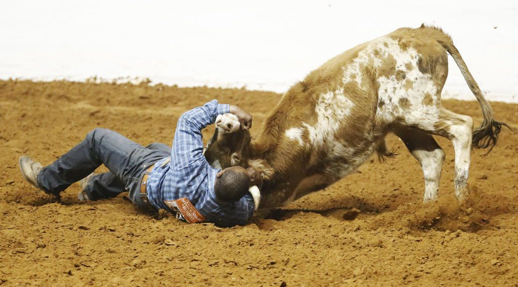 A cowboy wrestles a steer to the ground.