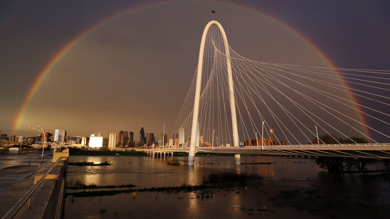 A full rainbow spans downtown Dallas, the rain-filled Trinity River and the Margaret Hunt Hill Bridge, March 19, 2020. A line of thunderstorms rolled through the Metroplex and began to clear downtown before the sun set.