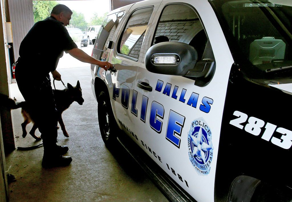 Dallas police Senior Cpl. Craig Woods pleaded guilty to lying to the FBI. He is pictured here in 2013 with his dog El. He was a member of the canine unit until he retired earlier this year