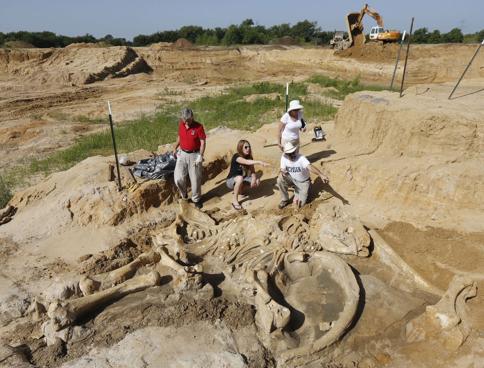 Navarro College biology Professor Thomas Vance (left); volunteer site coordinator Sunday Crider; Beth Hook, Perot Museum of Nature and Science marketing and communications director; and Perot Museum fossil preparator Ron S. Tykoski escavate a mammoth skeleton from an Ellis County gravel pit. Wayne McEwen, the pit's owner, is donating the find to museum.