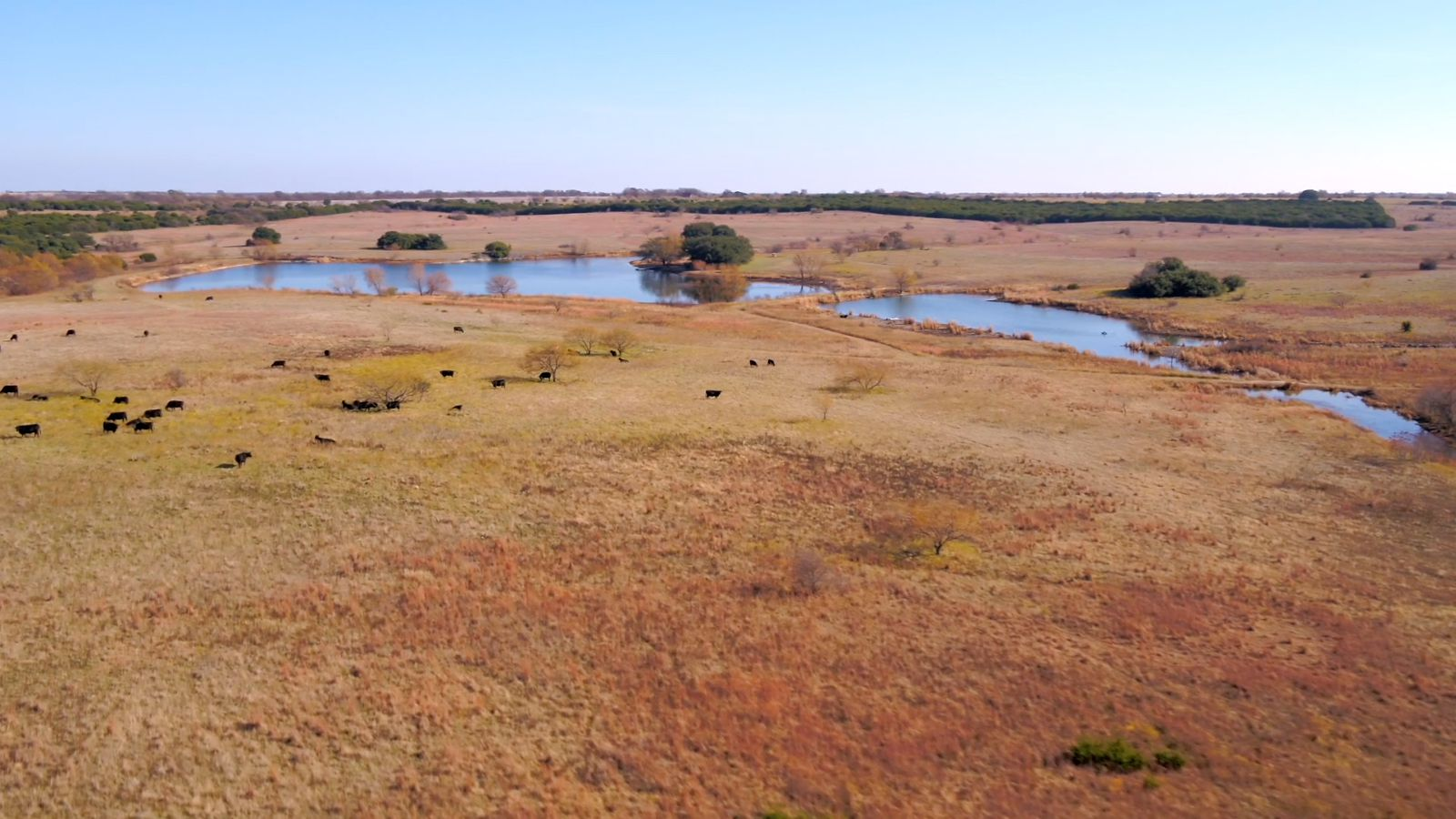 The ranch is almost 6,000 acres.