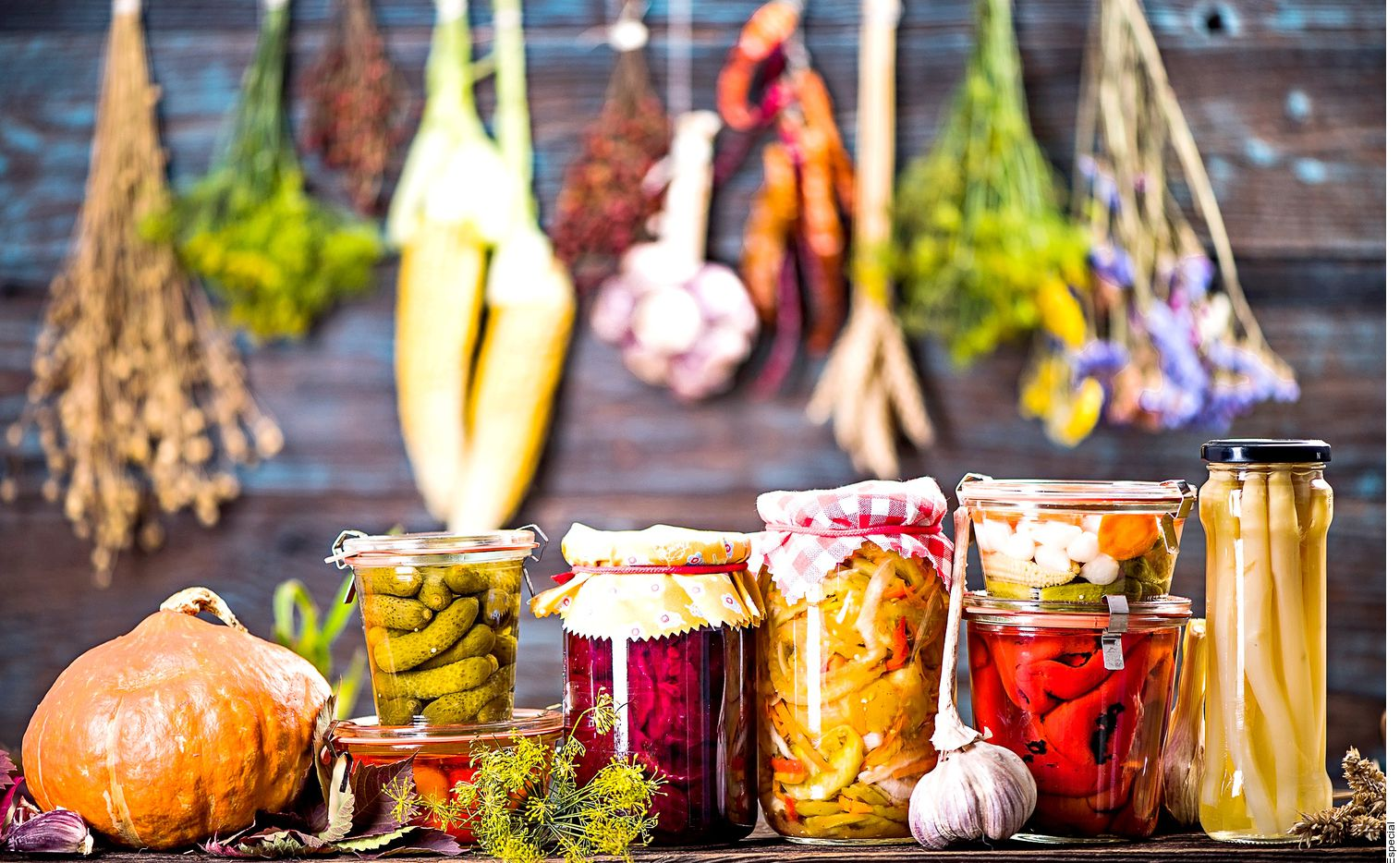 Ante el exceso de frutas, verduras y chiles. Expertos comparten recetas y métodos para evitar el desperdicio.