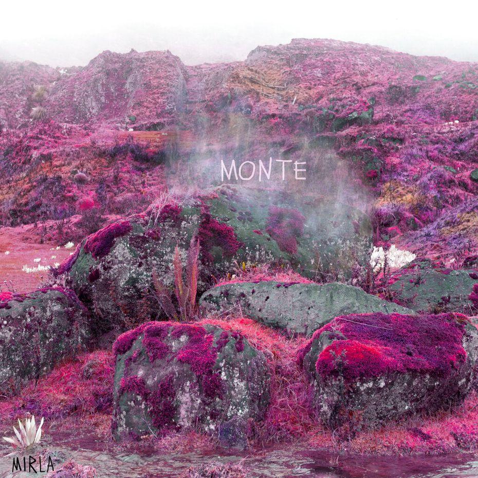 """En esta imagen proporcionada por Monte, el proyecto solista de Simón Mejía de Bomba Estéreo, la portada del álbum """"Mirla"""". Monte incorporó sonidos de la naturaleza colombiana a música electrónica para su álbum debut. (Cortesía de Monte vía AP)"""