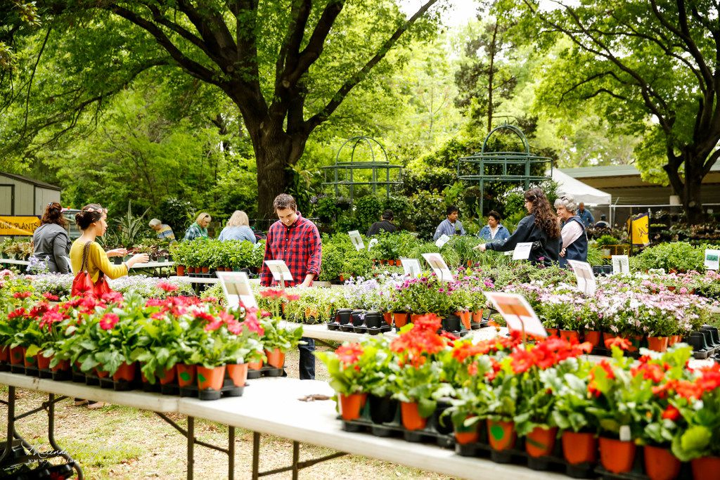 Bring a wagon and celebrate spring during the Fort Worth Botanic Garden spring plant sale March 29 and 30.
