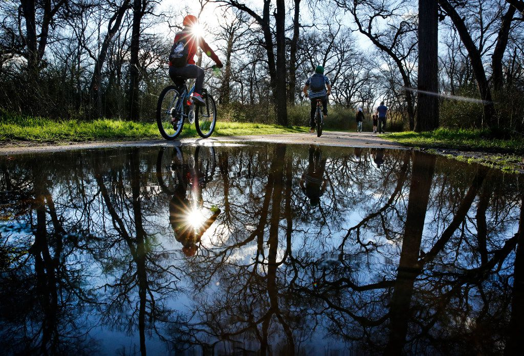 After overnight rains, cyclists and walkers navigate the water puddles along the paths of River Legacy Park in Arlington.