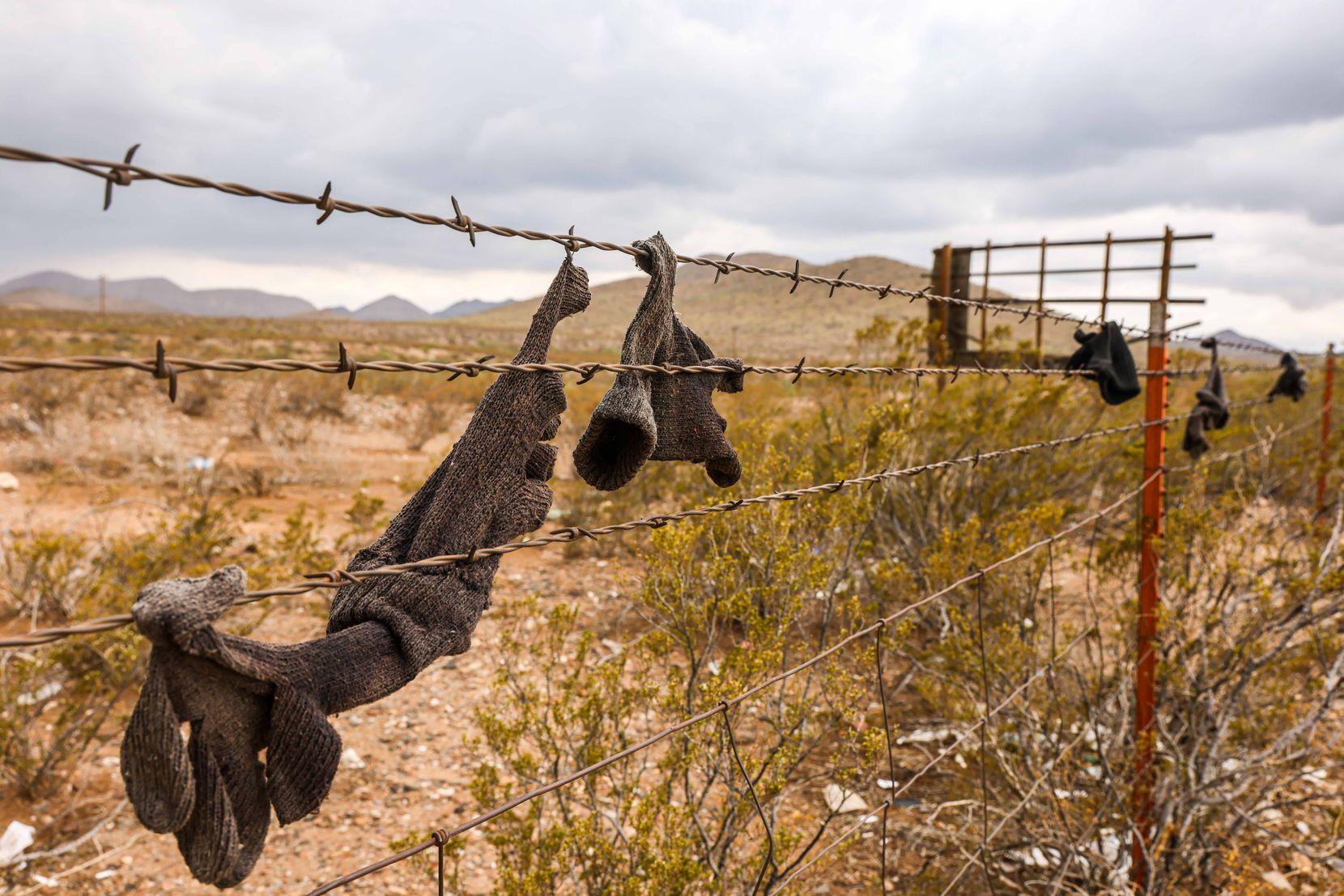 Varios guantes para el invierno quedaron atrapados en una cerca de alambre de púas cerca de la Interestatal 10 en Van Horn, parte del condado Culberson, al oeste de Texas.
