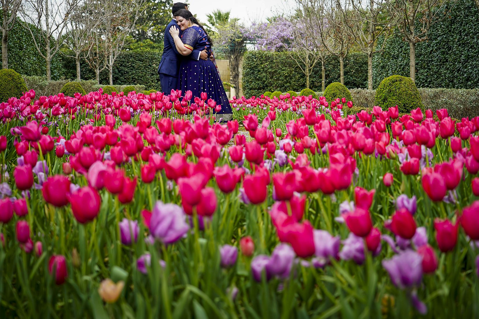 """Newlyweds Laura Remson and Abhishek Ravi posed for wedding photos after being married on the first day of spring at the nearly empty Dallas Arboretum on March 19, 2020.  The couple had planned a five-day, 250-person wedding in India with all of the traditional events, """"but that had to be postponed, revamped"""" due to the coronavirus, the bride said. """"We hope to do that eventually.""""  Moving to the arboretum became the """"backup plan,"""" she said with a laugh. """"We were looking for options to elope and still use the date that we had originally planned, and looking for something just small and intimate, and we are so glad the arboretum didn't close for events."""" So instead, they were married with just the bride's parents and sister present, along with photographer and officiant to keep the party under the city-mandated 10-person limit."""