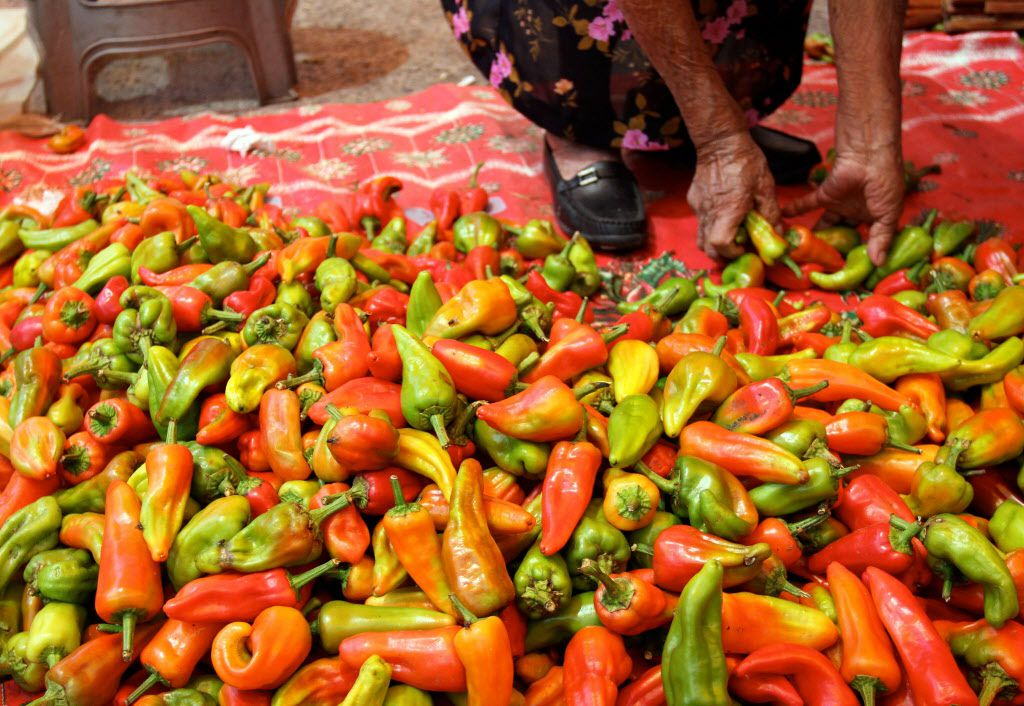 A vendor sorts chiles at the post in Tlacolula market in Tlacolula, Oaxaca on March 7, 2010. One of the largest states in Mexico, the state features sky-high mountains, arid valleys, lush tropical forests, cloud forests and beaches next to steep rocky hillsides that clash into the ocean.