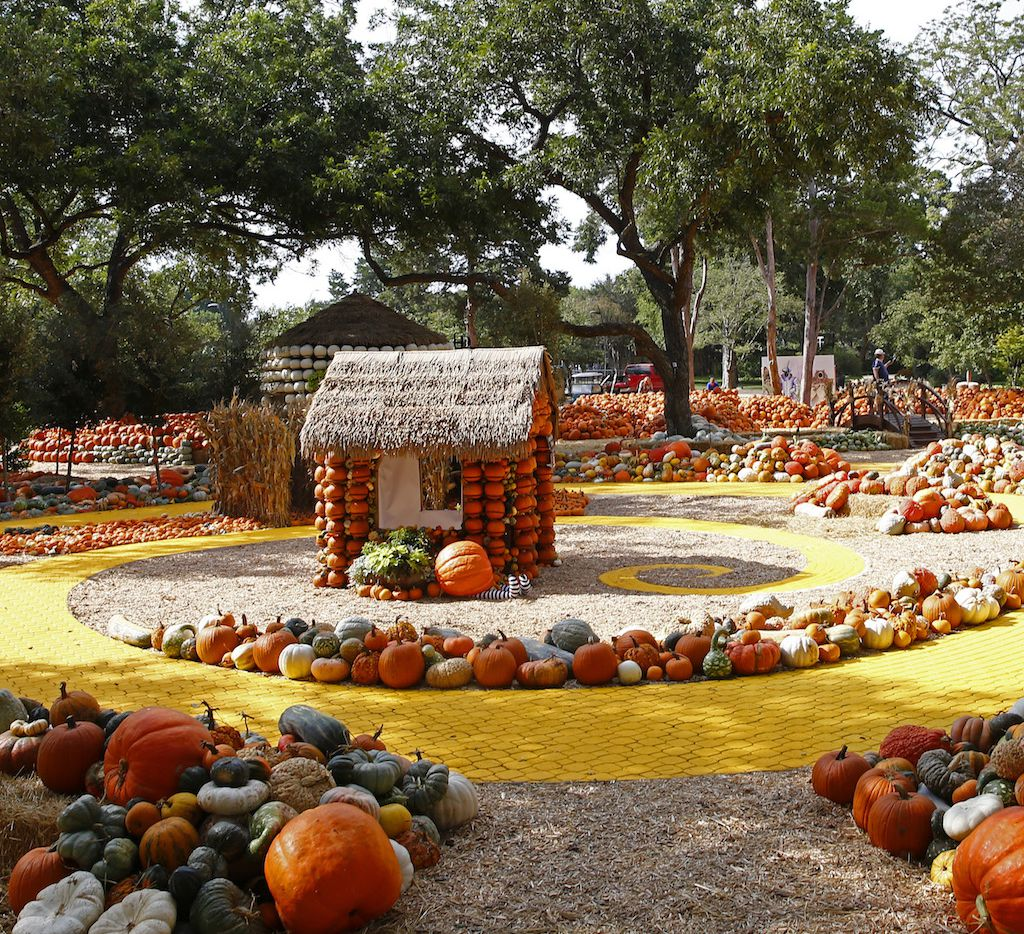 "For 2017, Autumn at the Arboretum's Pumpkin Village has a ""Wizard of Oz"" theme, including a yellow brick road."