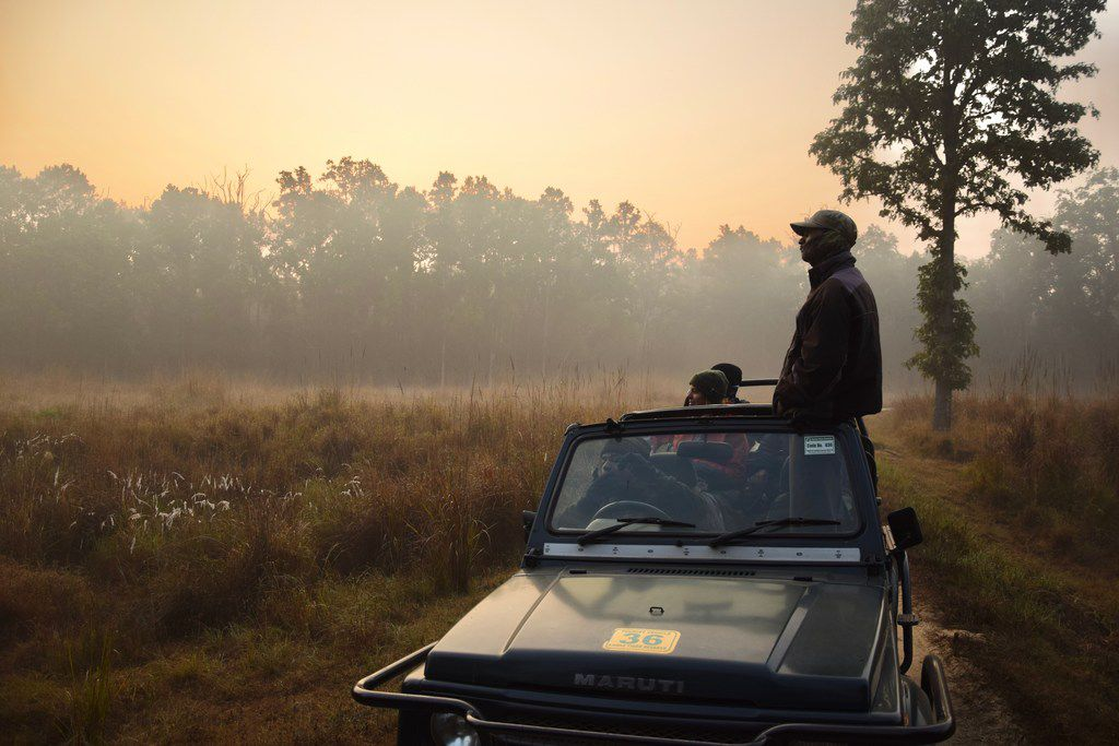 A wildlife spotter from the local Baiga tribe scans the horizon in Kanha National Park.