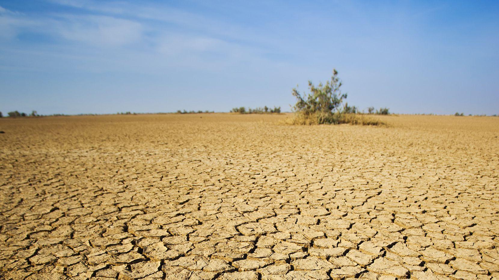 El suelo seco en un desierto en India.