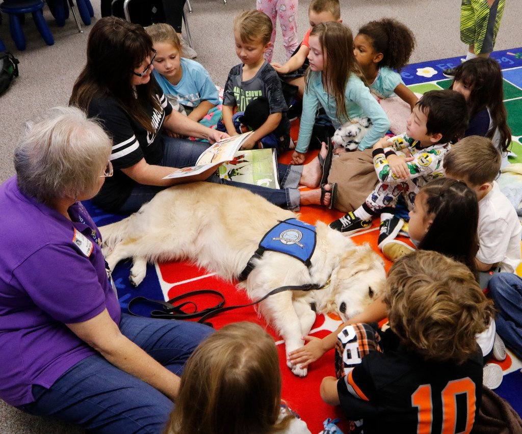 Pamela Nickman (left), ministry assistant, and Shannon Reynolds, counselor at McCall Elementary School in Willow Park, read with Pax, a comfort dog, to kindergarten students at St. Paul Lutheran Church in Fort Worth and The Summit in Aledo. Pax interacts with people at schools, nursing homes, and hospitals and in disaster response situations. (David Woo/Staff Photographer)