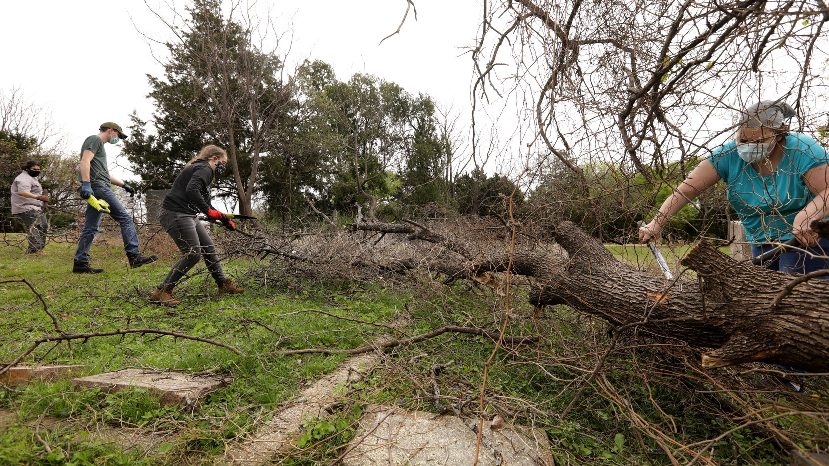 Volunteers clear away decades of overgrowth at Oak Cliff Cemetery on Apr. 3.