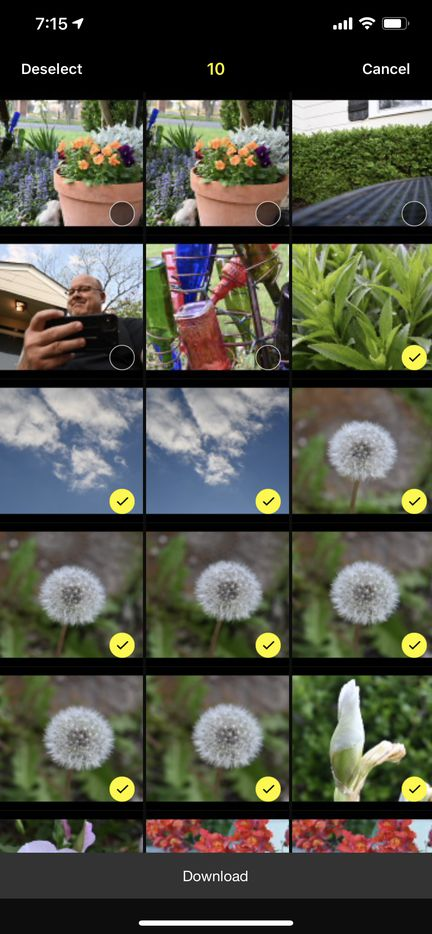 Nikon's SnapBridge is a quick way to transfer images from the Z 50 to your phone.