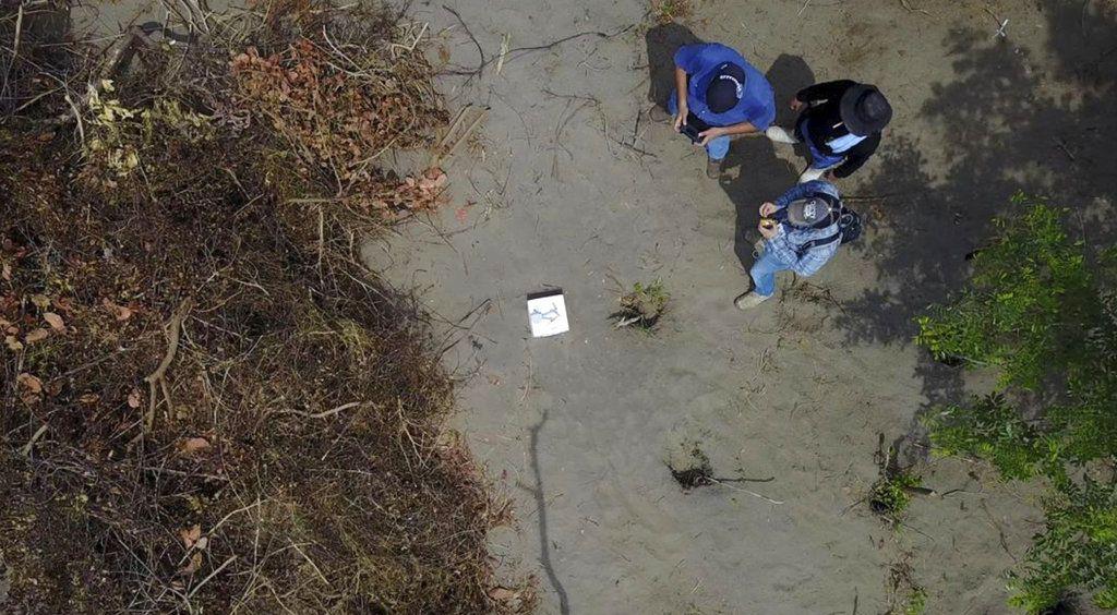 En esta foto sin fecha provista por la fiscalía del estado mexicano de Veracruz se muestra a trabajadores en el sitio donde se hallaron fosas clandestinas en ese lugar de México. (Fiscalía de Veracruz via AP)