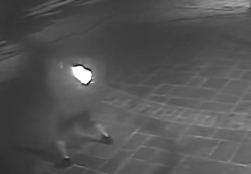 El video capta a una persona lanzando una bomba molotov en el norte de Dallas.