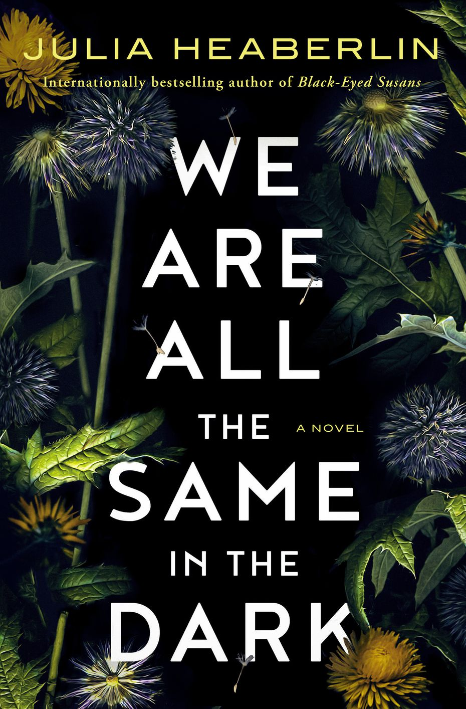"""""""We Are All the Same in the Dark,"""" the new thriller by Julia Heaberlin, is set in a North Texas town haunted by the disappearance years earlier of a beloved homecoming queen."""