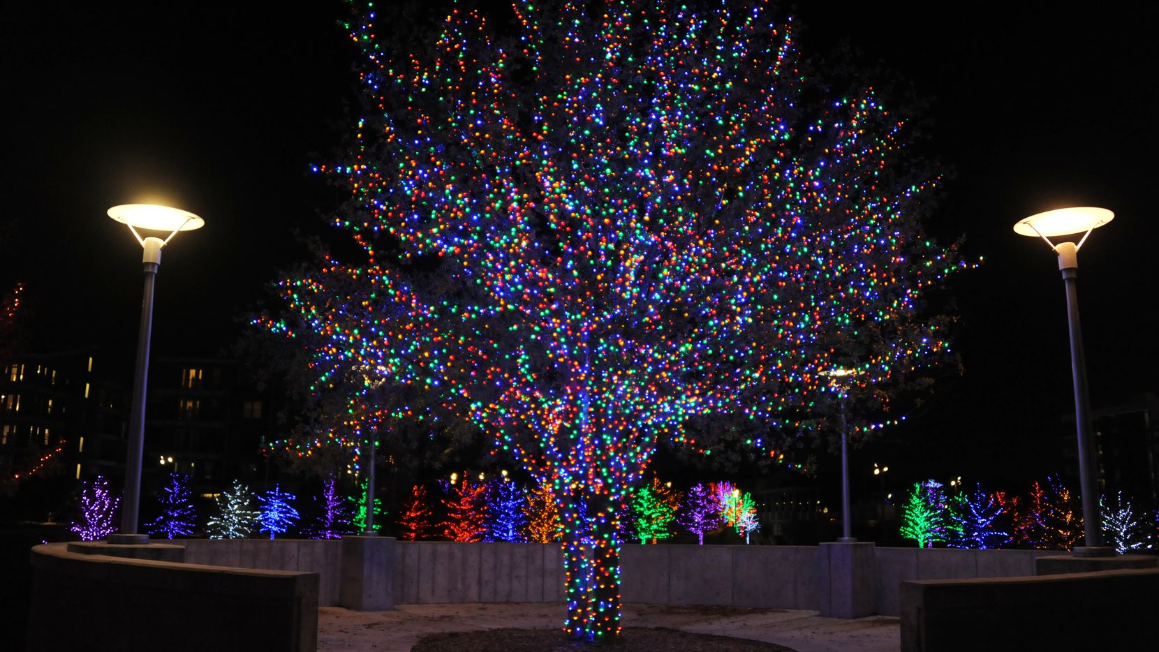 Vitruvian Park celebrates the holidays with a free festive light display.