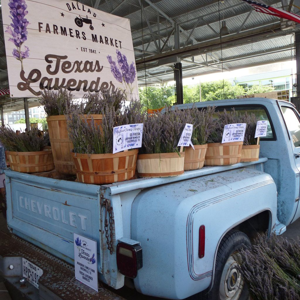 The Dallas Farmers Market was singling out and celebrating lavender growers last weekend, which filled the shed with a heady aroma.