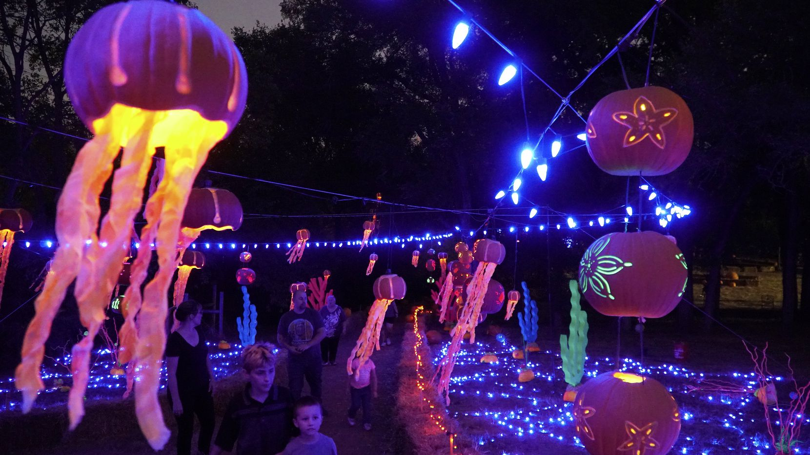 Guest stroll through the Pumpkin Reef display at Pumpkin Nights in Arlington, Texas, on Wednesday, Oct. 9, 2019. The Halloween-themed event is open through Nov. 2, 2019.
