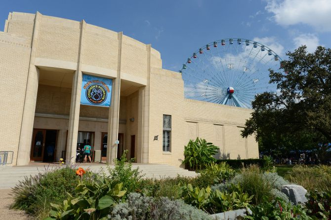 9) GARDENS AND AN AQUARIUM -  Try to hit Texas Discovery Gardens at noon for the butterfly release and the Children's Aquarium at Fair Park at 2:30 p.m. for the feedings of different sea creatures daily. There's lots to see at both spots. Expect snakes, tarantulas and a lovely oasis of flowers and greenery at TDG. Kids can touch stingrays, get their pictures taken with life-size rubber octopus tentacles and meet Spike, the 190-pound alligator snapping turtle, at the aquarium.