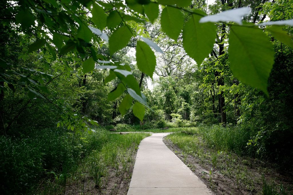 The Texas Buckeye Trail in the Great Trinity Forest is pictured here. Southern Dallas' trail system is expanding this year with the expected completion of the Honey Springs-Cedar Crest Trail, which is near the Cedar Crest Golf Course.