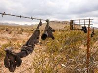 """El alambre de púas señala la propiedad privada en la I-10, en Van Horn, Texas, en el condado de Culberson. Una orden ejecutiva de gobernador Greg Abbott permite la detención de migrantes por """"ingreso ilegal""""."""