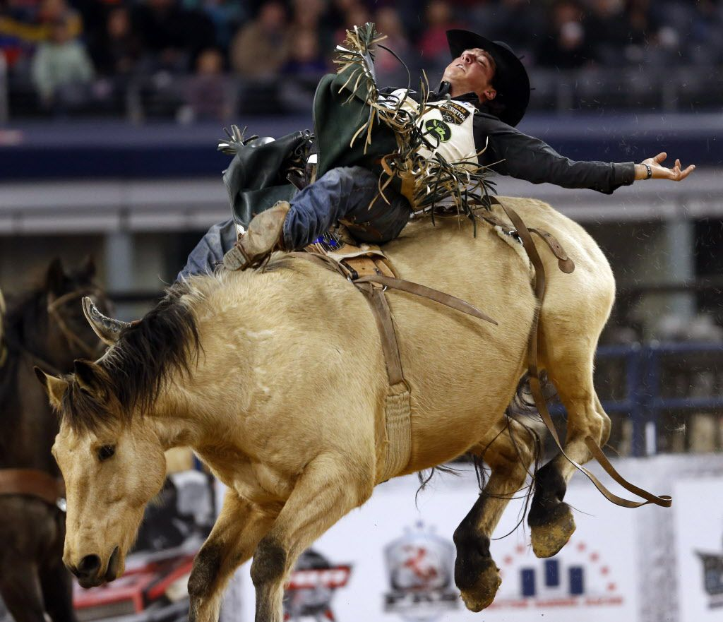 Richmond Champion of Dublin, Texas, competes in the bareback final 4 shoot-out event during the RFD TV's American Rodeo at AT&T Stadium. Champion won the event.