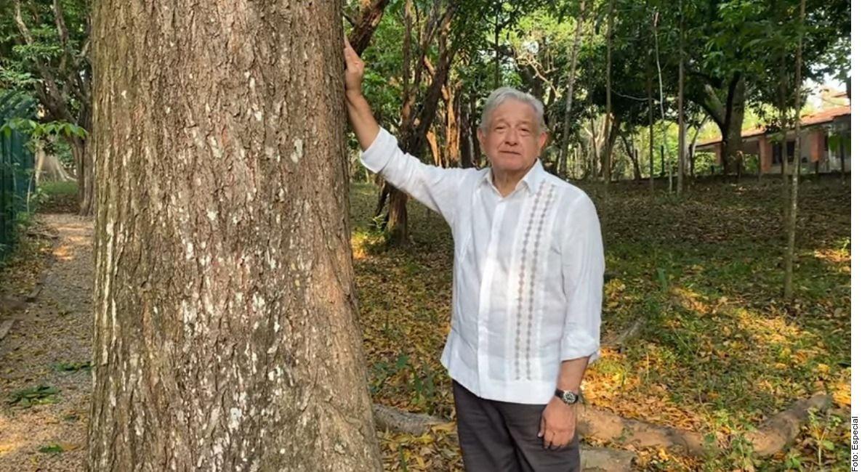 La propuesta del mandatario mexicano Andrés Manuel López Obrador es que se apoye a los agricultores para que planten árboles durante tres años, y que posteriormente esas personas puedan obtener una visa de trabajo por seis meses en Estados Unidos.