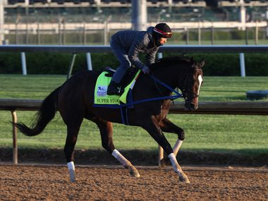 LOUISVILLE, KENTUCKY - APRIL 26:  Super Stock runs on the track during training for the Kentucky Derby at Churchill Downs on April 26, 2021 in Louisville, Kentucky.