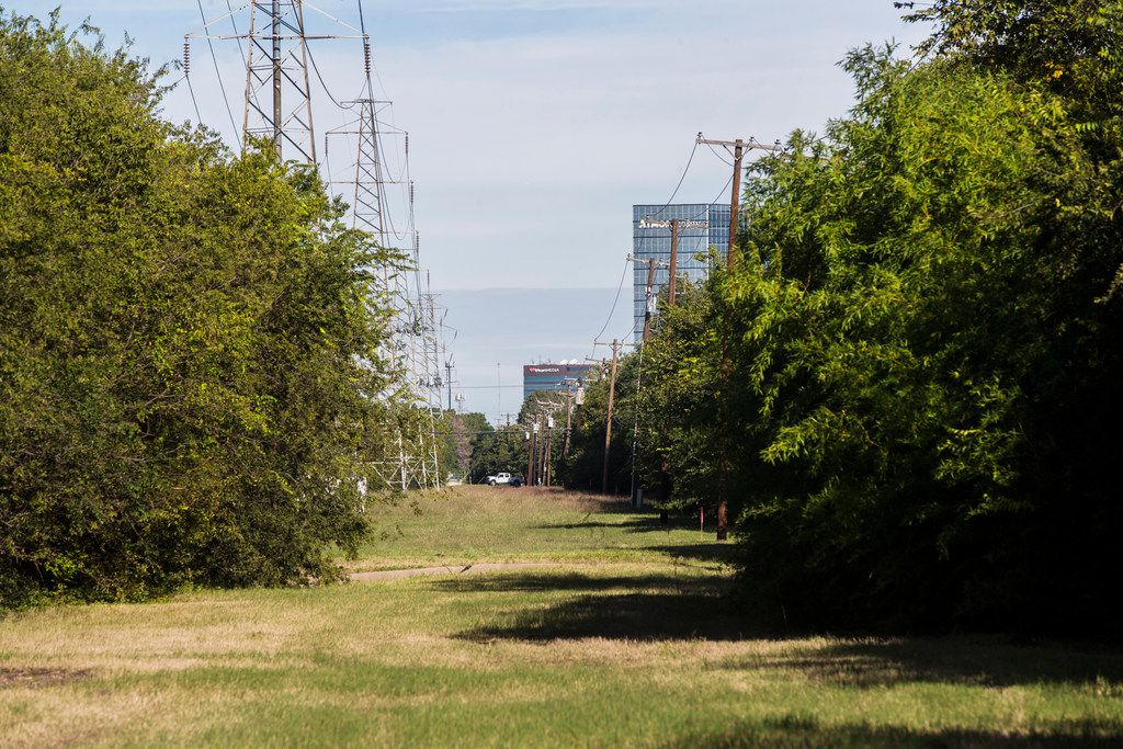 Before the transmission lines are replaced, these trees have to go. According to Oncor.