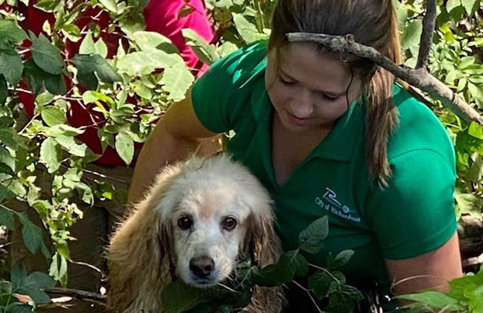 Mary Lovell, a Richardson city animal services officer, helps rescue Madison, a 14-year-old cocker spaniel mix who wandered away from her Canyon Creek home.